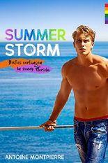 Summer Storm [Gay Romance]