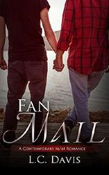 Fan Mail: A Contemporary Gay Romance