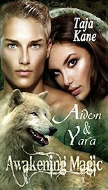 Aiden & Yara: Awakening Magic (Band 2)