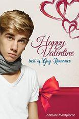 Happy Valentine - Best of Gay Romance!