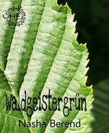 Waldgeistergrün