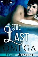 The Last Omega: (Mpreg shifter romance) (The Night Pack Book 1)