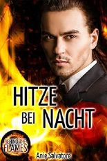 Hitze bei Nacht: Behind The Flames 3