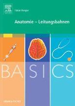 BASICS Anatomie - Leitungsbahnen