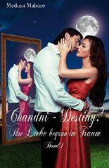 Chandni - Destiny? Ihre Liebe begann im Traum