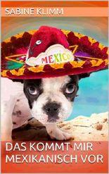 Das kommt mir mexikanisch vor