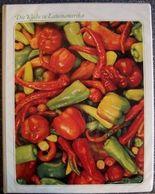 Die Küche in Lateinamerika - Internationale Speisekarte + Rezeptbuch (Internationale Speisekarte) Time Life (Internationale Speisekarte)