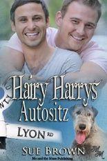 Hairy Harrys Autositz (Die Lyon Road - Tierärzte)