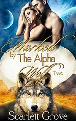 Marked By The Alpha Wolf: Book Two (Braving Darkness 2)