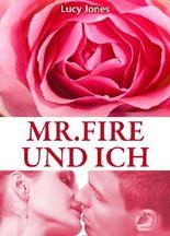 Mr. Fire und ich, Band 3