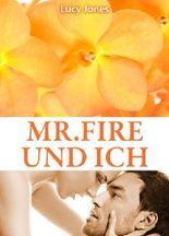 Mr. Fire und ich, Band 4