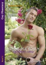 Söhne der Rosen - Die rätselhaften Zwillinge (Gay Phantasy)
