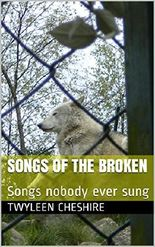 Songs of the broken: Songs nobody ever sung