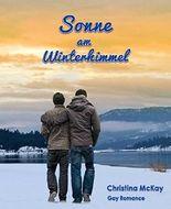 Sonne am Winterhimmel (German Edition)