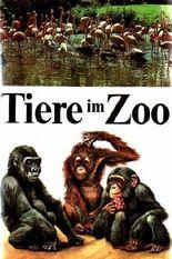 Tiere im Zoo