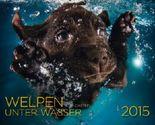 Welpen unter Wasser 2015