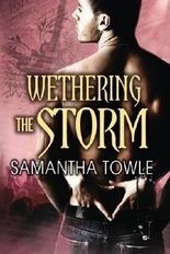 Wethering the Storm (The Storm Series) by Towle, Samantha (2013) Paperback