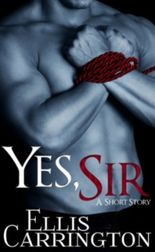 Yes, Sir (A Short Story)