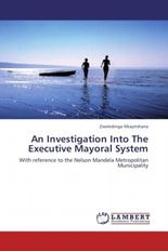 An Investigation Into The Executive Mayoral System
