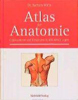 Atlas der Anatomie. Organsysteme und Strukturen