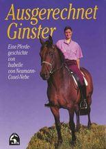 Ausgerechnet Ginster