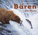 Bären am Fluss