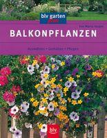 Balkonpflanzen