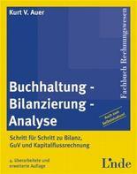 Buchhaltung, Bilanzierung, Analyse