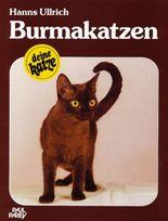 Burmakatzen