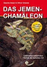 Das Jemenchamäleon / Chamaeleo calyptratus