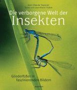 Die verborgene Welt der Insekten