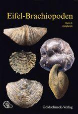 Eifel-Brachiopoden
