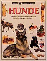 Hunde. Die faszinierensten Arten und Rassen. Evolution, Aussehen, Verhalten