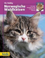 Ihr Hobby Norwegische Waldkatzen