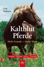 Kaltblut-Pferde