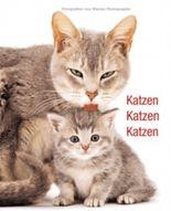 Katzen, Katzen, Katzen