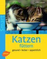 Katzen füttern