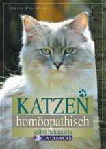 Katzen homöopathisch selbst behandeln