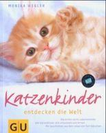 Katzenkinder entdecken die Welt