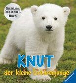 Knut, der kleine Eisbärenjunge