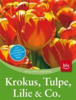 Krokus, Tulpe, Lilie & Co.