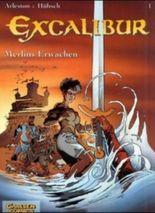 Merlins Erwachen