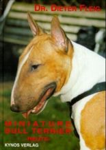 Miniature Bull Terrier - heute
