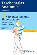 Nervensystem und Sinnesorgane
