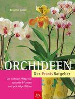 Orchideen. Der Praxis-Ratgeber