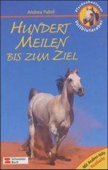 Pferdeabenteuer - Vollblutaraber