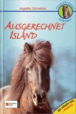 Pferdeabenteuer Isländer