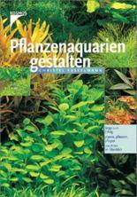 Pflanzenaquarien gestalten