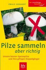 Pilze sammeln aber richtig