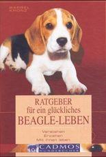 Ratgeber für ein glückliches Beagle-Leben